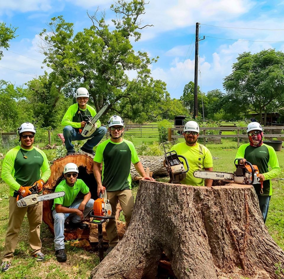 Storm Cleanup Service in Katy, TX