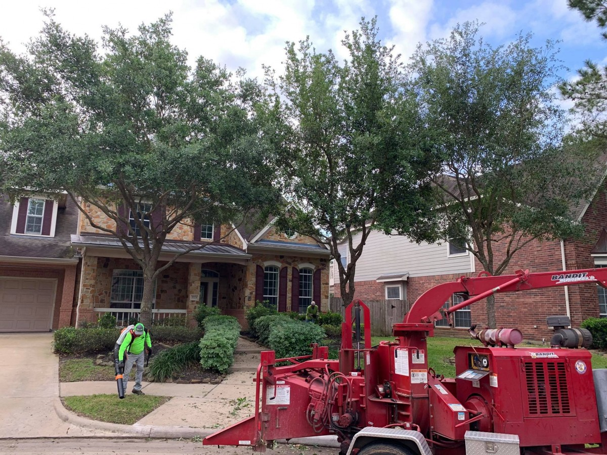 Land Clearing Service in Katy, TX