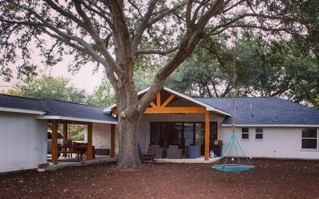 Arborist Shares Tree Pruning Tips To Help Residents Of Katy Tx