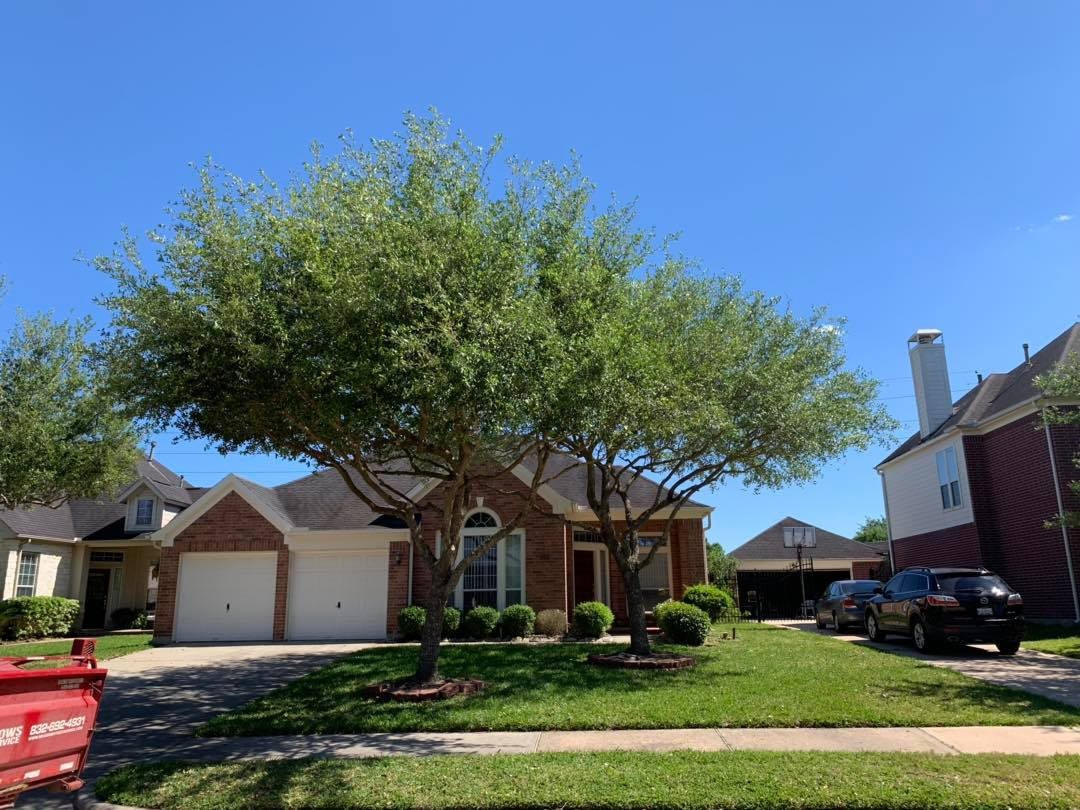 Land Clearing Service in Katy TX